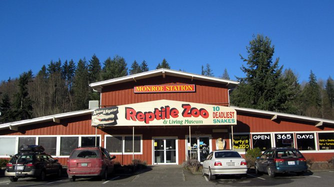 Creatures of night, brought to light: The Reptile Zoo in Monroe, WA