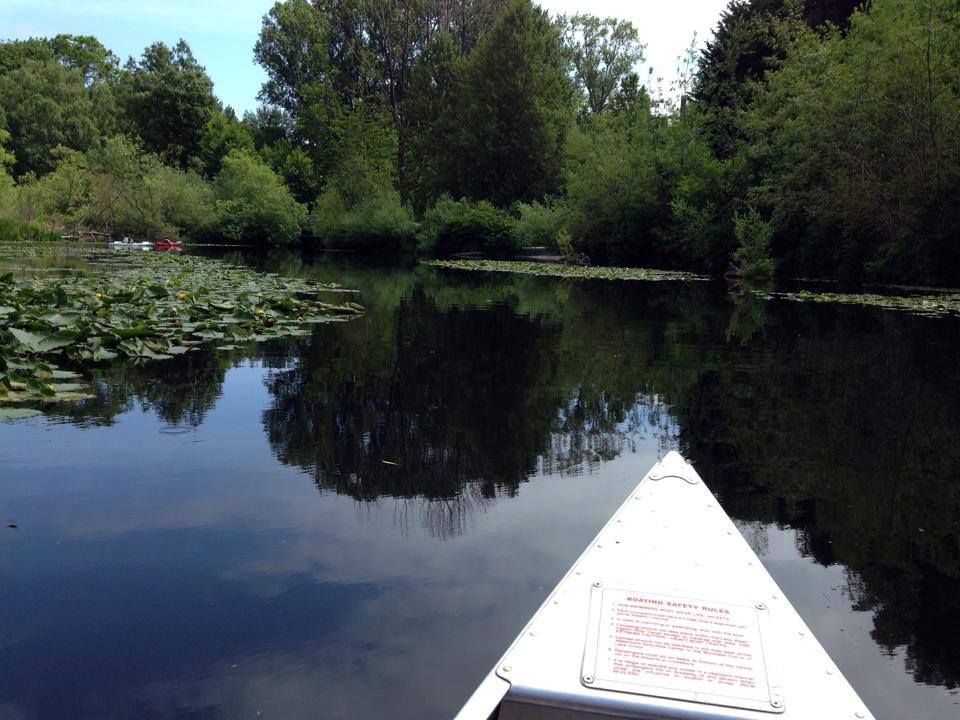 canoeing-on-lake-washington