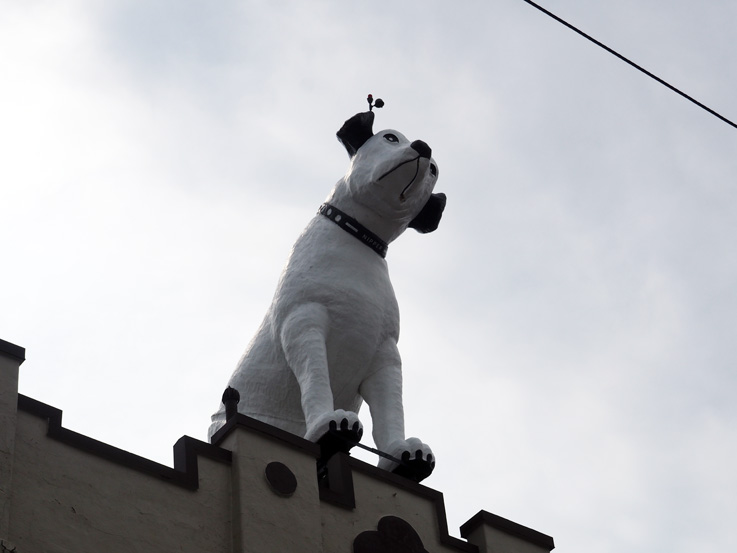 Spotted On The Roadside Nipper The Giant Dog In Albany