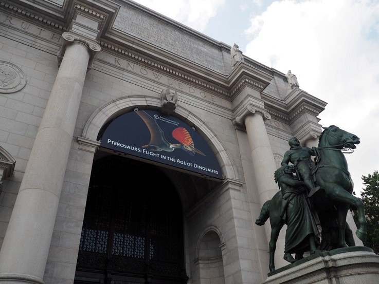 The American Museum of Natural History in NY, NY