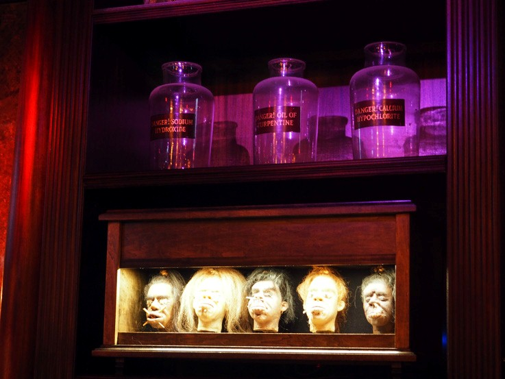 shrunken head bar