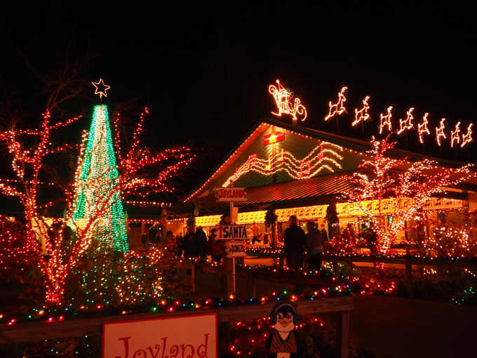 Christmas Twinkle Lights