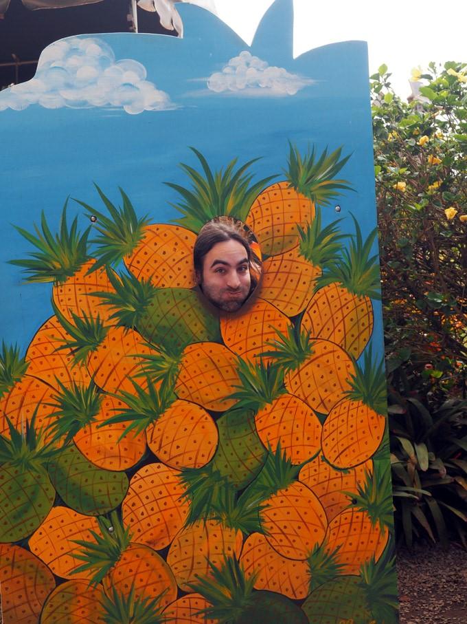 jason pineapple