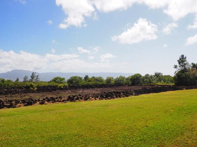 Pu'u O Mahuka Heiau Oahu
