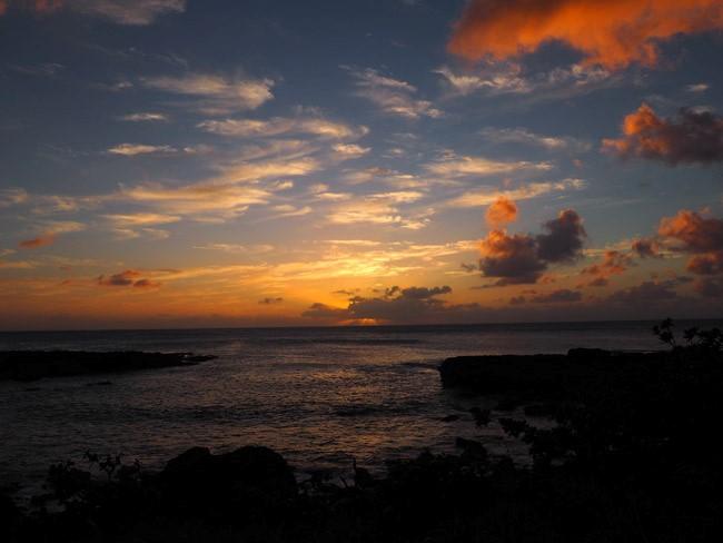 shark cove sunset