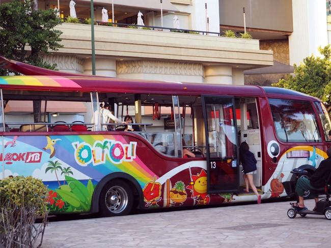 whale tail tourist bus