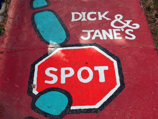 dick and janes spot