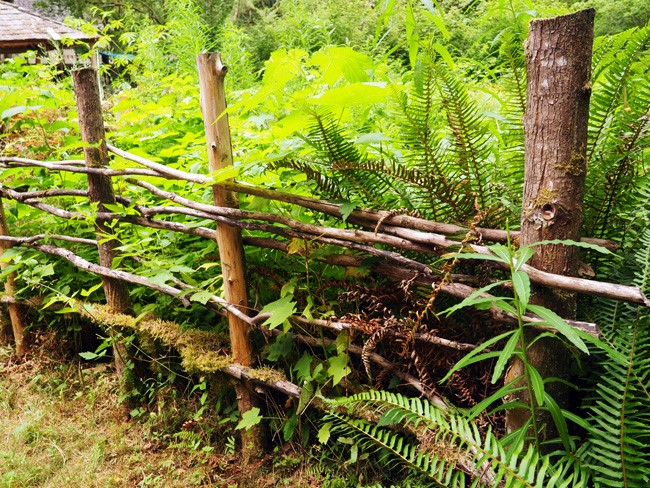 rustic fences