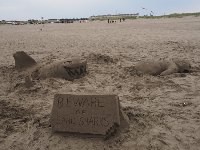 beware of sand sharks