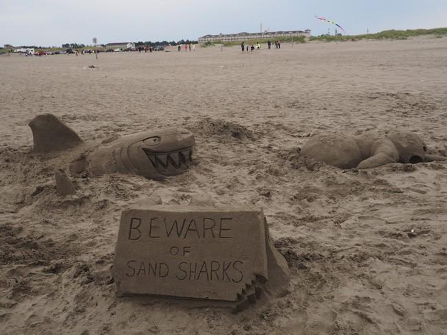 beware of sand sharks