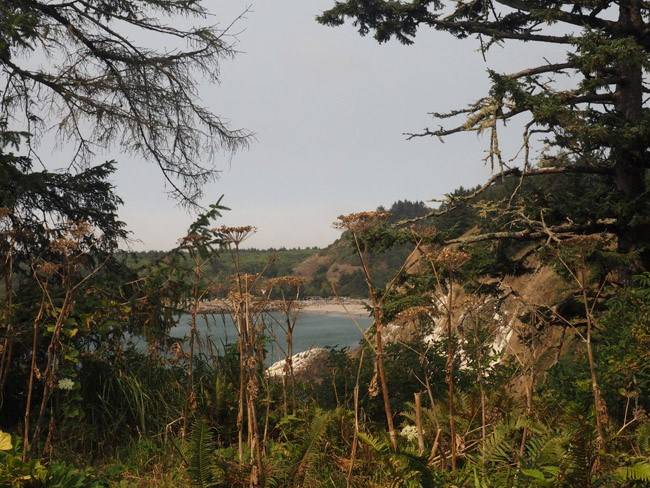 It's OK I guess: A trip to Cape Disappointment