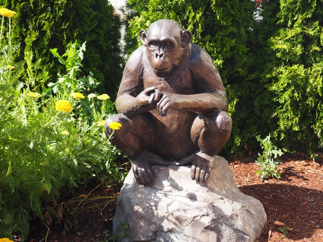 Spotted on the Roadside: The Friendship Chimp in Ellensburg, WA