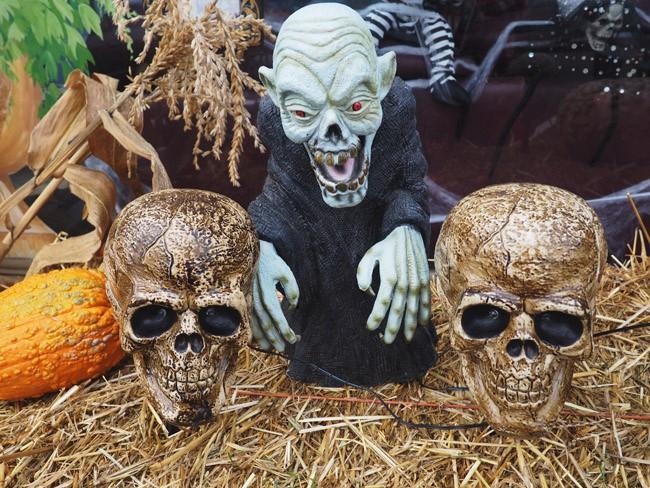 vampire and skulls