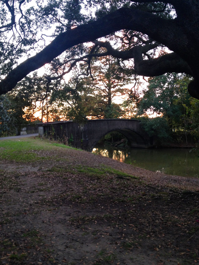 A stroll through Audubon Park
