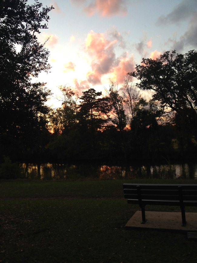 audubon park sunset