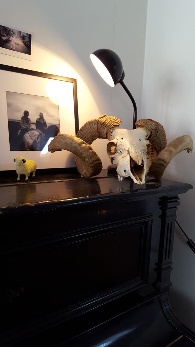 piano skull