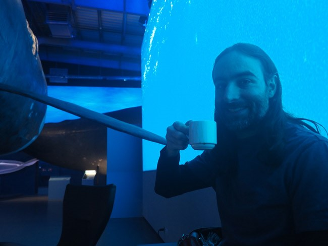 drinking coffee among the whales