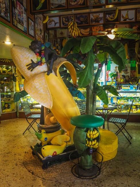 banana museum (23 of 41)