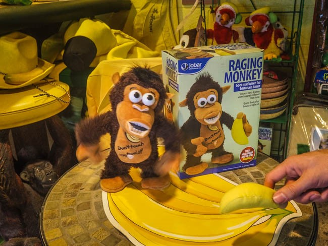 banana museum (24 of 41)
