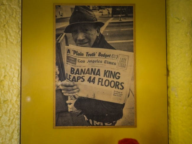 banana museum (27 of 41)