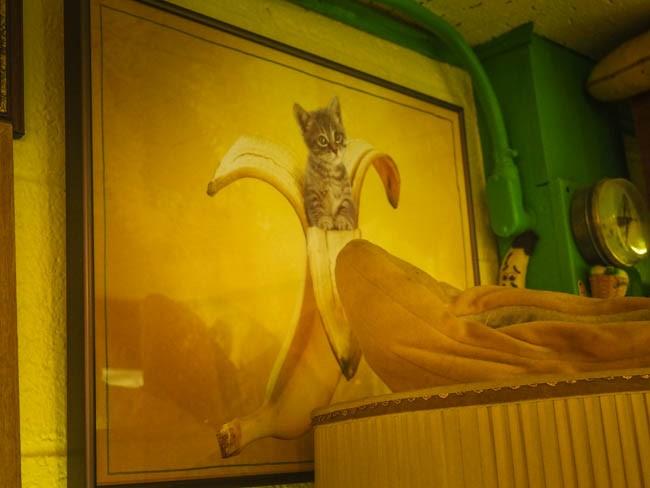 banana museum (29 of 41)