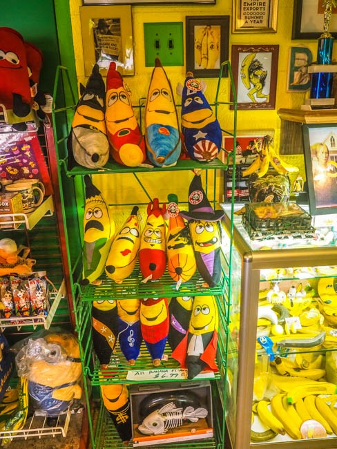 banana museum (4 of 41)