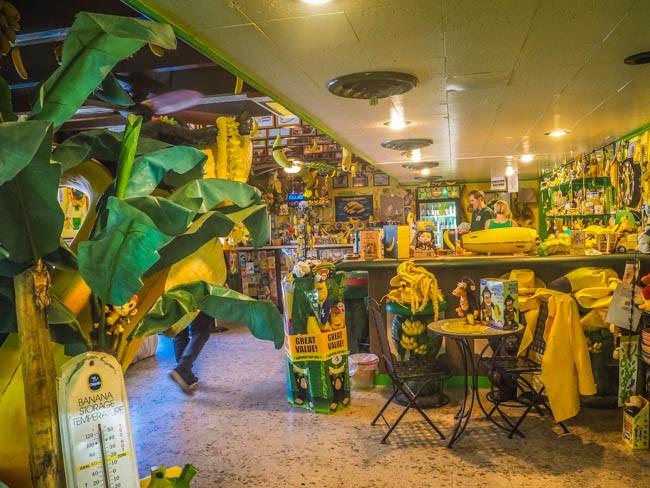 banana museum (9 of 41)