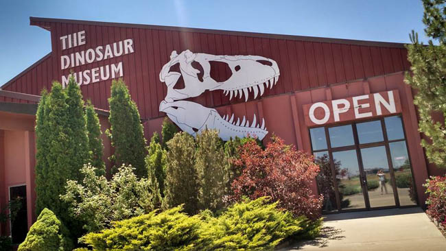 Sunburn and Bugs 2016: Even More Dinosaurs