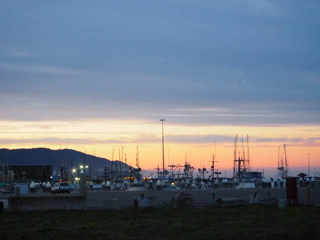 A Northern California/Southern Oregon Coast Morning