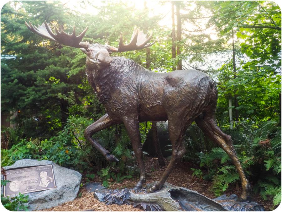 The Elk Bugling Tour at NW Trek