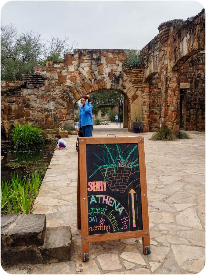 Photo post: Lady Bird Johnson Wildflower Center in Austin, TX